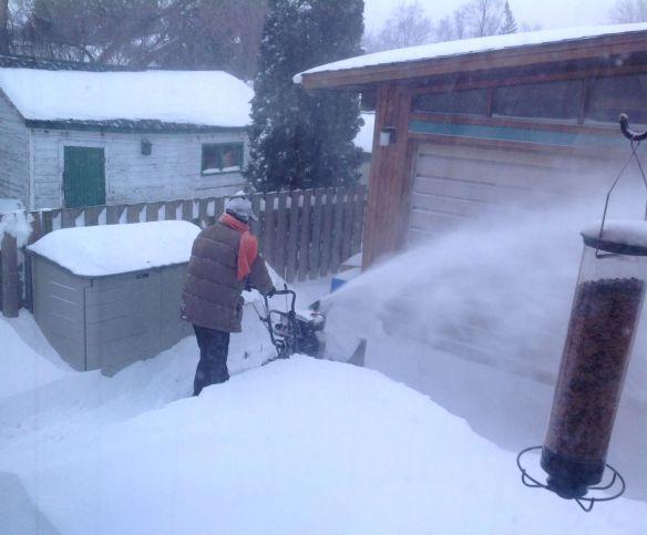 Snowpocolypse 2013